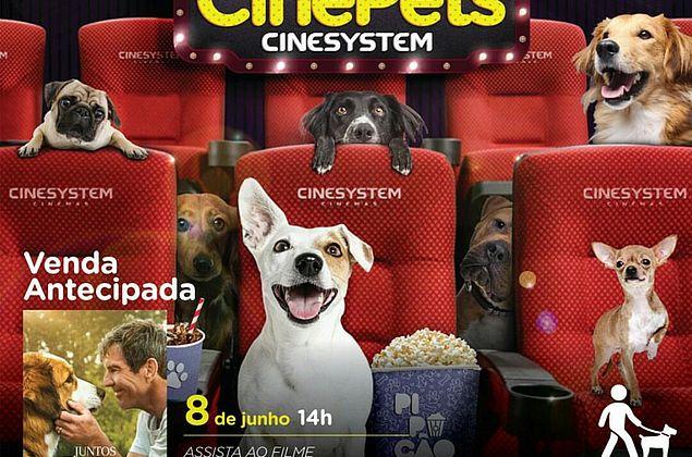 CinePets: Maceió tem sessão liberada para donos levarem cães