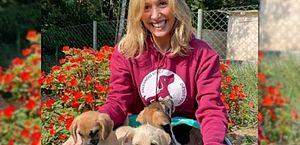 """Luisa Mell nega acusação de roubar cachorro de raça: """"Óbvio que não"""""""