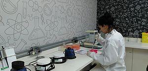 Em experimentos com camundongos, o anti-inflamatório ácido mefenâmico se mostrou mais eficiente do que a única droga hoje disponível para o combate à verminose, o praziquantel