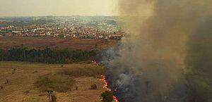 Ambientalistas acusam governos federal e estaduais de descaso com incêndios no Pantanal