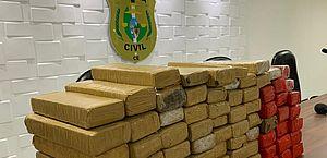 Trio é preso com quase 67 kg de maconha no Ceará; parte da droga foi achada dentro de geladeira