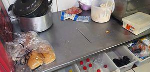 Estabelecimento tinha alimentos fora da validade e equipamentos enferrujados
