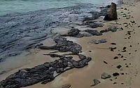 Manchas de óleo chegam à praia de Tamandaré, em Pernambuco