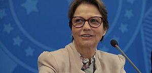Ministra vê distorções na associação entre agricultura e desmatamento