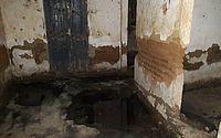Operação flagra dois abates clandestinos de animais em Arapiraca
