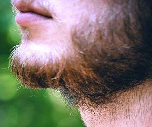 Barba pode ter mais germes que pelo de cachorro