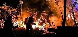Cem turistas são retirados às pressas de incêndio na Chapada dos Veadeiros