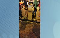 Menino e cavalo morrem atropelados em acidente na Durval de Góes Monteiro