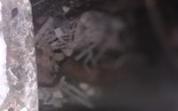 Corpo é encontrado sem roupas dentro de prédio abandonado no Centro de Maceió