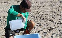 Equipes do IMA e Ufal coletam amostras na costa alagoana