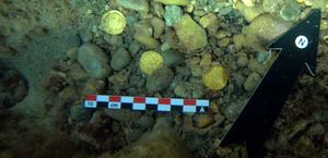Moedas de ouro romanas são encontradas no fundo do mar de Alicante