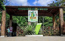 Parque Municipal realiza atividades para mais de 100 crianças nesta terça-feira (26)