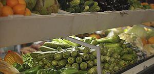 O N-verde pode ser usado em todo tipo de lavoura, mas o projeto tem foco nas hortaliças