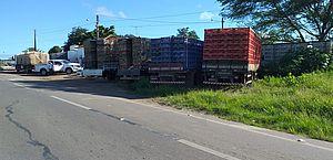 Polícia apreende mais de 13 toneladas de frangos vivos em nove municípios alagoanos