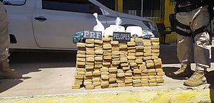 Operação apreende cocaína, crack e 92 kg de maconha em cidades do Agreste