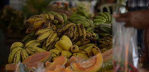 Ministério da Saúde lança guia alimentar de bolso para menores de 2 anos; confira
