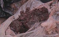 Fiscalização recolhe cerca de 300 kg de carne estragada em mercado do Tabuleiro