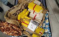 Casal com 53 kg de cocaína é preso ao tentar embarcar para Portugal