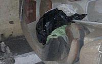 Lancha se desprende de carro, atinge poste e deixa idosa ferida no Jacintinho; veja vídeos