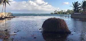 Vídeos: moradores da Barra Nova sofrem com avanço da água do mar