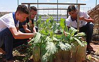 Governo de Alagoas institui lei da escola sustentável na rede estadual