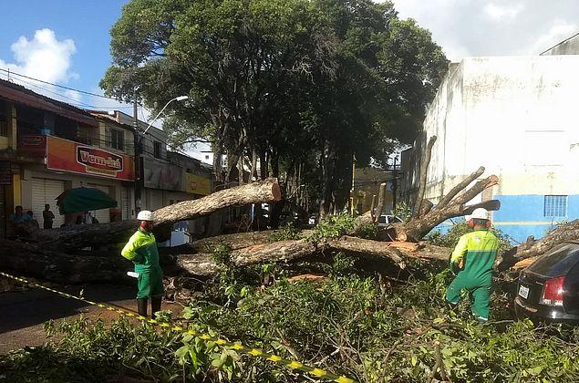 Rua das Árvores segue interditada nesta quarta-feira (11)