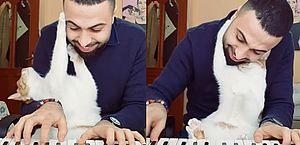 Encantador de gatos toca piano e se livra da depressão; veja vídeos