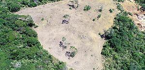 Operação Mata Atlântica em Pé identifica e coíbe crimes ambientais em Alagoas