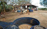 FPI flagra situação precária em aldeia indígena no município de Palmeira dos Índios