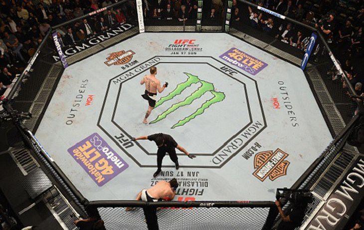 Josh Hedges/UFC