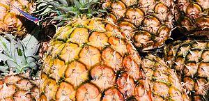 Abacaxi tem efeito analgésico? Cientistas desvendam ação da enzima bromelina