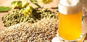 Novo rótulo deverá dizer se cerveja contém milho ou arroz